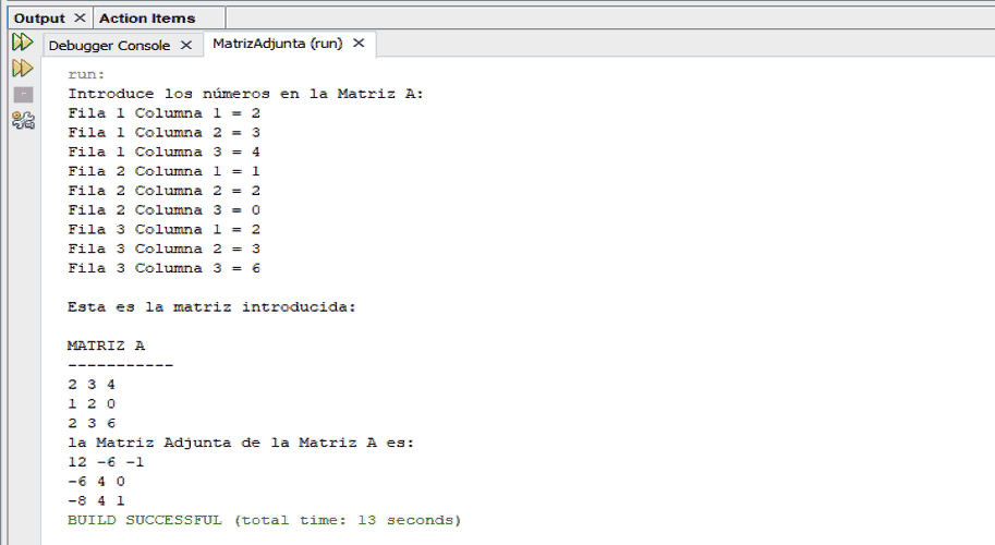 Salida en consola de programa Java. Matriz adjunta.